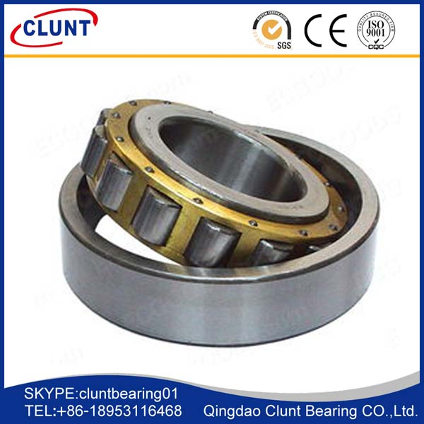 GCR15 cylindrical roller bearings
